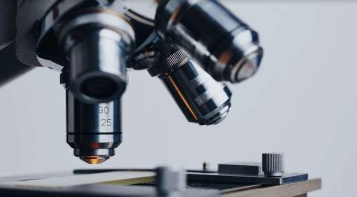 Meccanobiologia, a Brescia nasce il centro per la medicina del futuro